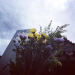 川崎市 多摩区と麻生区の寺院墓地で、お引渡しとご納骨を行ってきました
