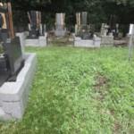 川崎市の寺院墓地 ここにどんなお墓をデザインしましょうか。
