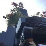 川崎市多摩区の寺院墓地 ご納骨のお手伝いをしてきました。
