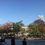 横浜から大阪へ。お墓事情などを見てきます。