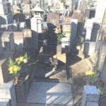 お墓の不具合箇所など。早めの確認、早めの修繕がお勧めです!