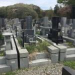 川崎市営霊園の早野聖地公園で、お墓の雑草対策。