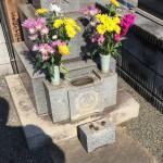 お墓の比較的簡単なリフォーム相談、随時受付中です!ぜひお問い合わせください。