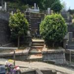 傾斜地に建つお墓。リフォームのご提案をします。東京都稲城市の寺院墓地。